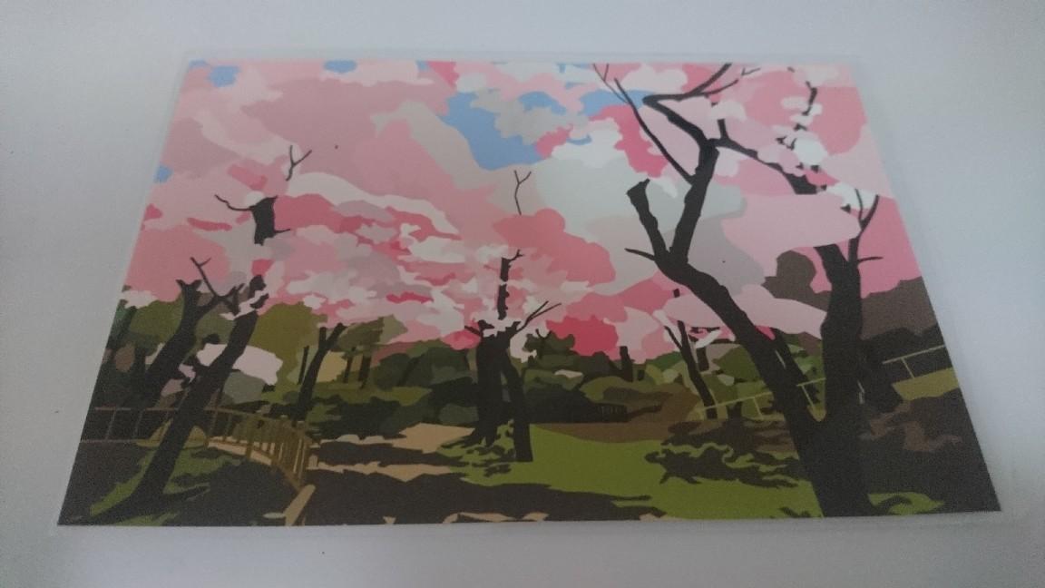 函館観光絵はがき桜シリーズ_b0106766_20395725.jpg