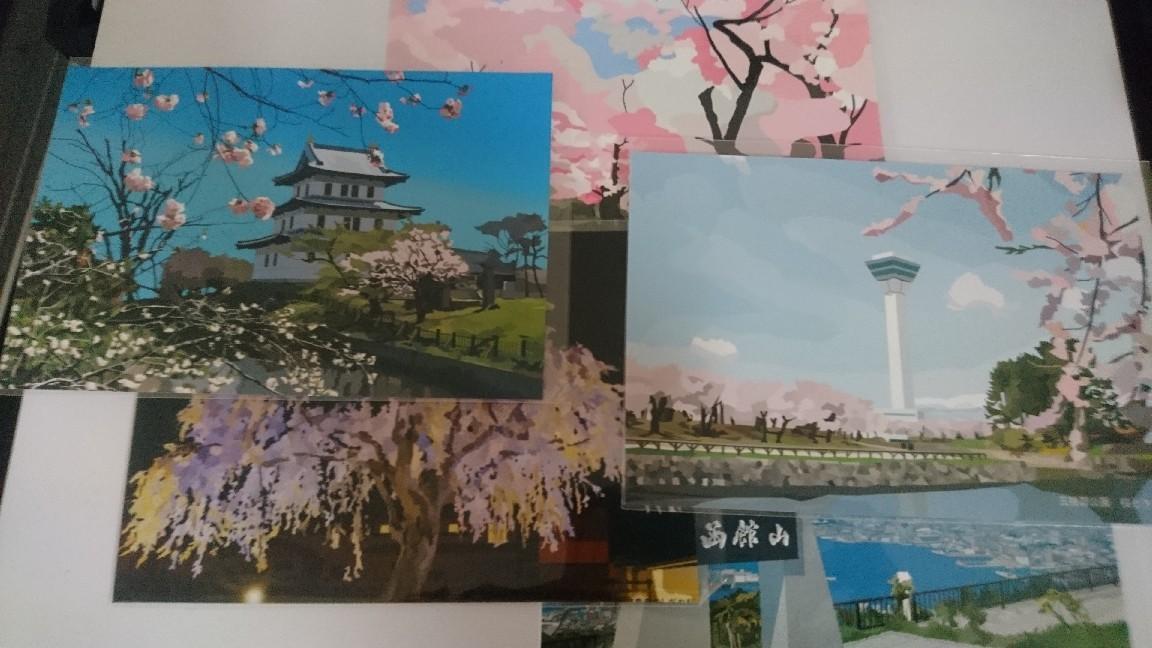 函館観光絵はがき桜シリーズ_b0106766_20400662.jpg