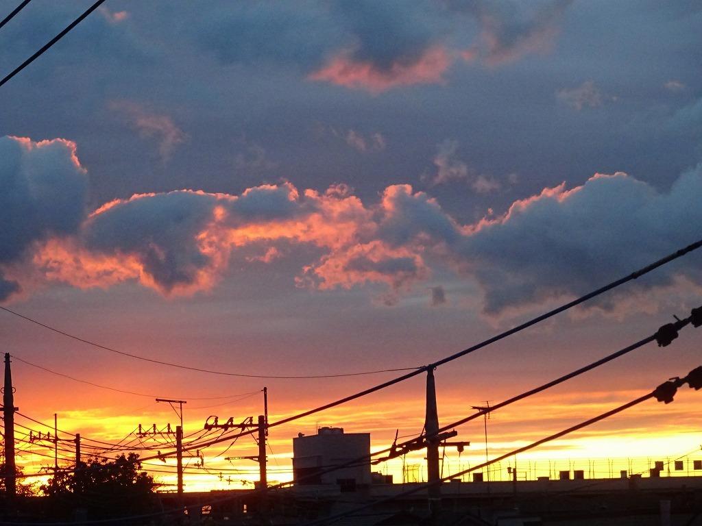 無職生活二十一日目 3 【世界がこんなでも、夕焼けはいつもどおり】_d0061678_13371563.jpg