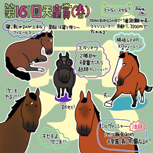 第161回天皇賞(春)_a0093189_23240145.jpg