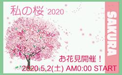 私の桜 2020_d0363917_01390149.jpg
