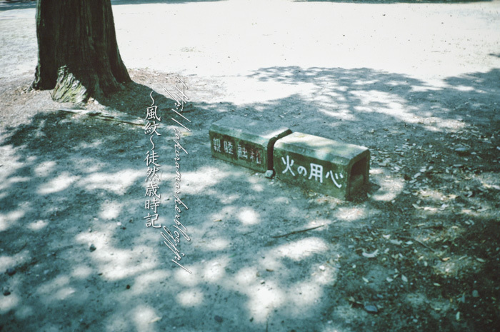 木陰の休息所。_f0235723_20504173.jpg