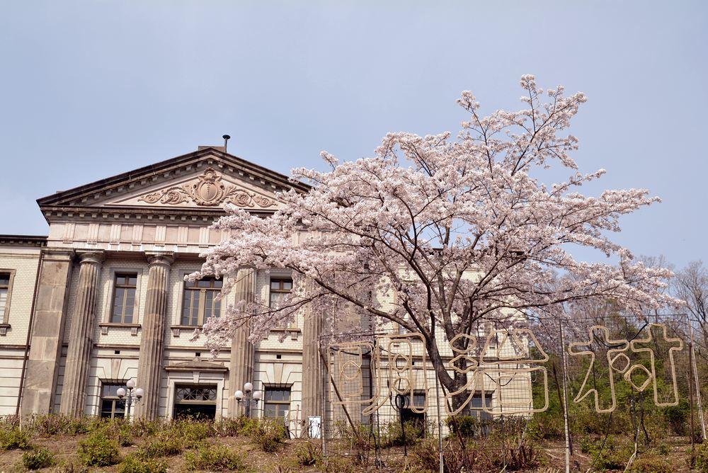 内閣文庫と桜_e0373930_10572698.jpg