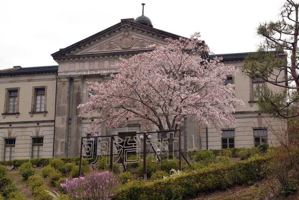 内閣文庫と桜_e0373930_10572774.jpg