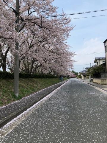 春の歌_e0078452_13573004.jpg