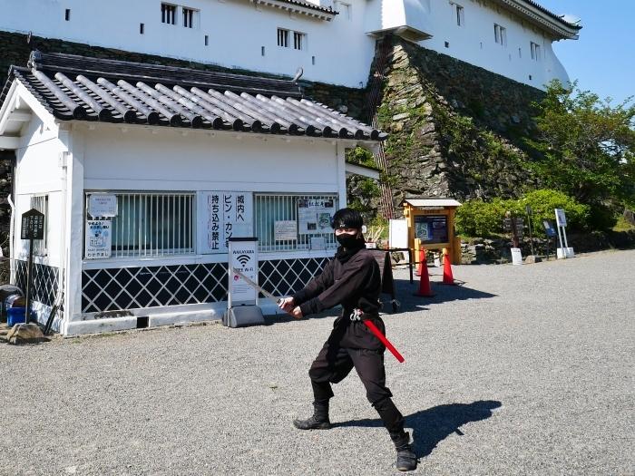 和歌山城にて  2020-05-15 00:00   _b0093754_23111870.jpg