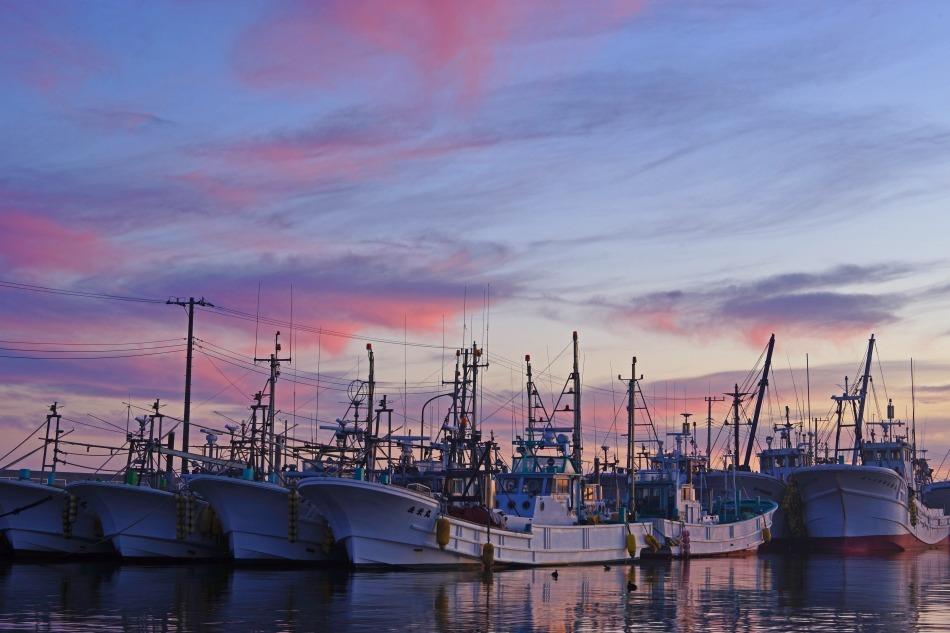夕暮れの漁港  2020ー06‐13 更新_e0229455_14220248.jpg