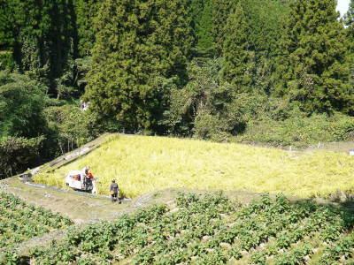 米作りの挑戦(2020年) 昨年より1週間早く苗床を作りました!(前編:温湯消毒から苗床完成まで)_a0254656_17465219.jpg