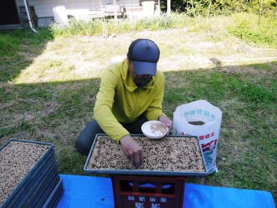 米作りの挑戦(2020年) 昨年より1週間早く苗床を作りました!(前編:温湯消毒から苗床完成まで)_a0254656_18322584.jpg
