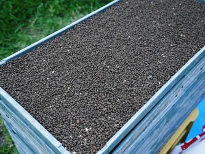米作りの挑戦(2020年) 昨年より1週間早く苗床を作りました!(前編:温湯消毒から苗床完成まで)_a0254656_18344933.jpg