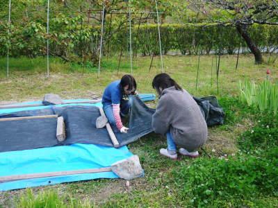米作りの挑戦(2020年) 昨年より1週間早く苗床を作りました!(前編:温湯消毒から苗床完成まで)_a0254656_18381642.jpg