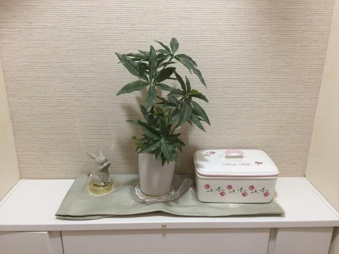 トイレ用バクチャー届きました(^^)✨_c0180209_10160539.jpeg