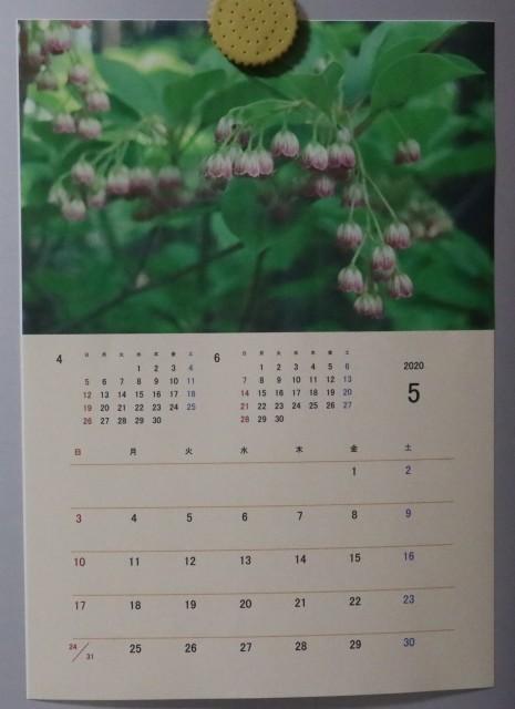 5月のカレンダーと庭改修~♪_e0397815_21192186.jpg
