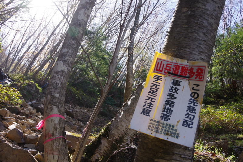 皇海山と鋸山_a0165316_20520614.jpg