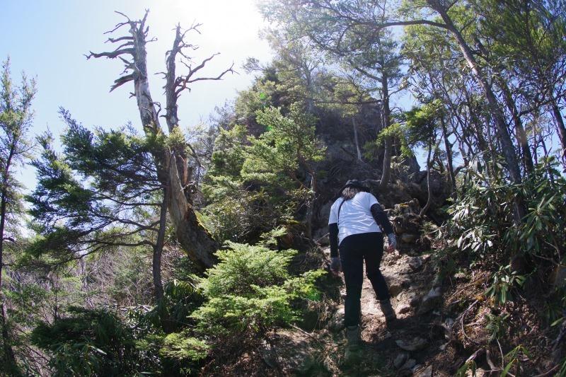皇海山と鋸山_a0165316_21084136.jpg