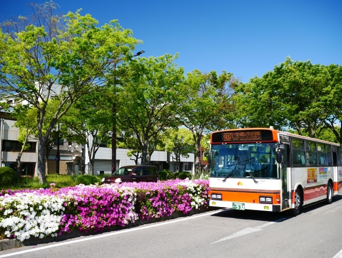 美しい新緑とつつじのけやき大通り  2020-05-06 00:00   _b0093754_22234298.jpg