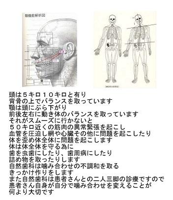 『原因療法』が大切_d0338857_10293475.jpg
