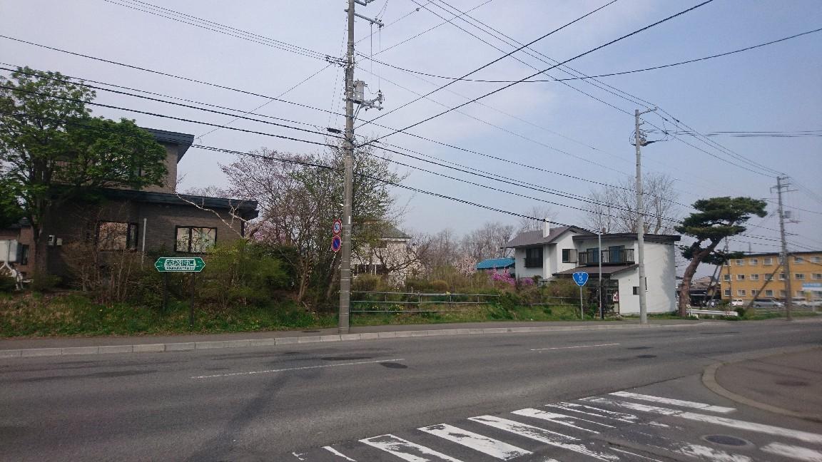 国道5号赤松街道、花は咲く_b0106766_08384891.jpg