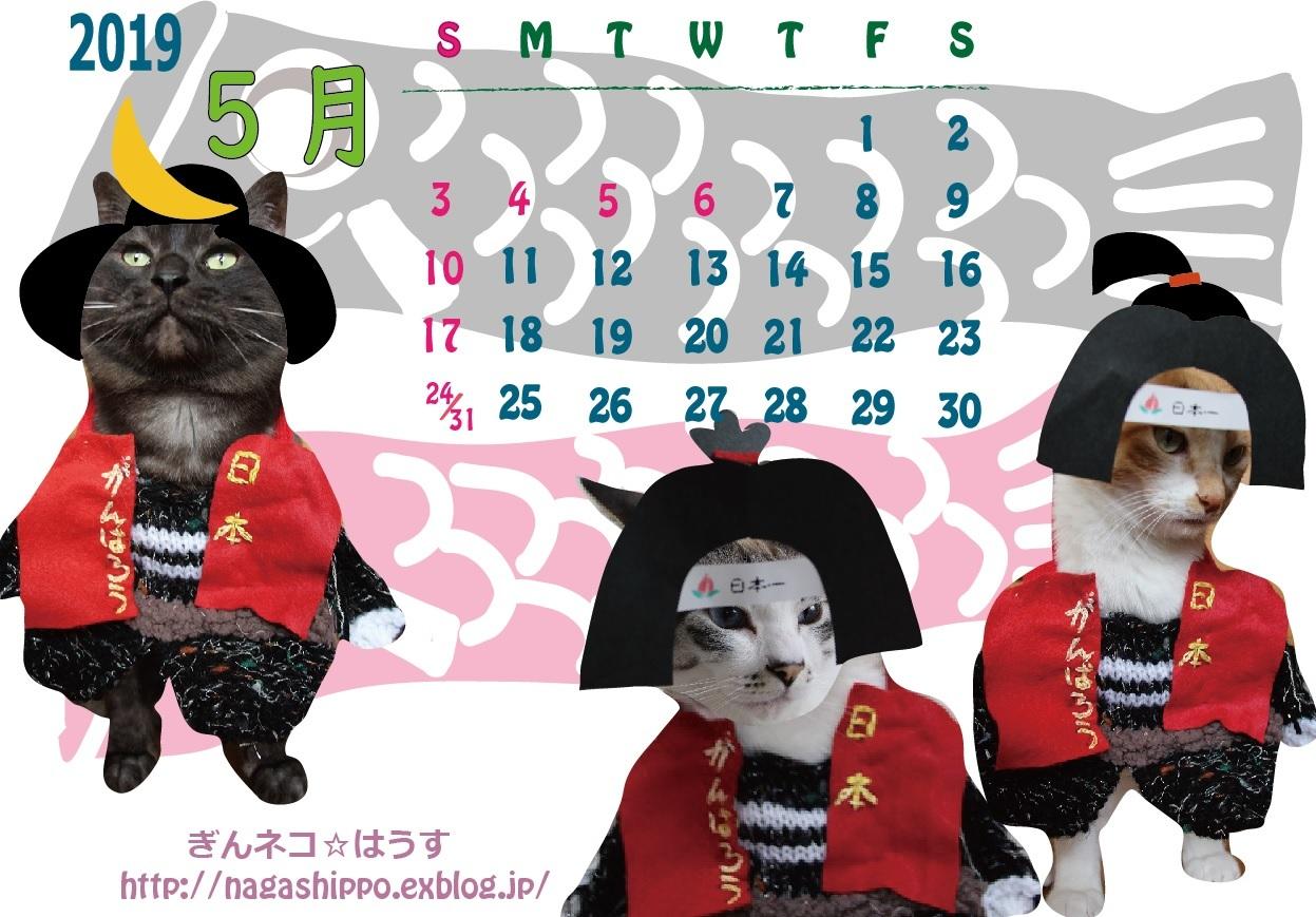 ぎんネコ☆はうす オリジナルカレンダー2020年5月_a0333195_16064963.jpg