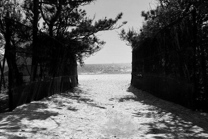 稲毛の浜_f0067724_04482265.jpg