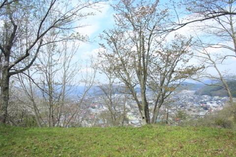 鍋倉公園の桜(2020.05.04)_f0075075_18034818.jpg