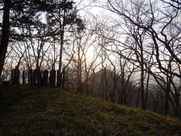 青麻山(39回目)~ 2020年5月2日_f0170180_09251131.jpg