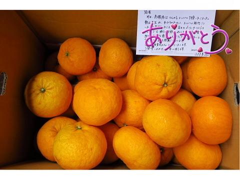 「なお子の お料理教室物語」その1_d0046025_00543904.jpg