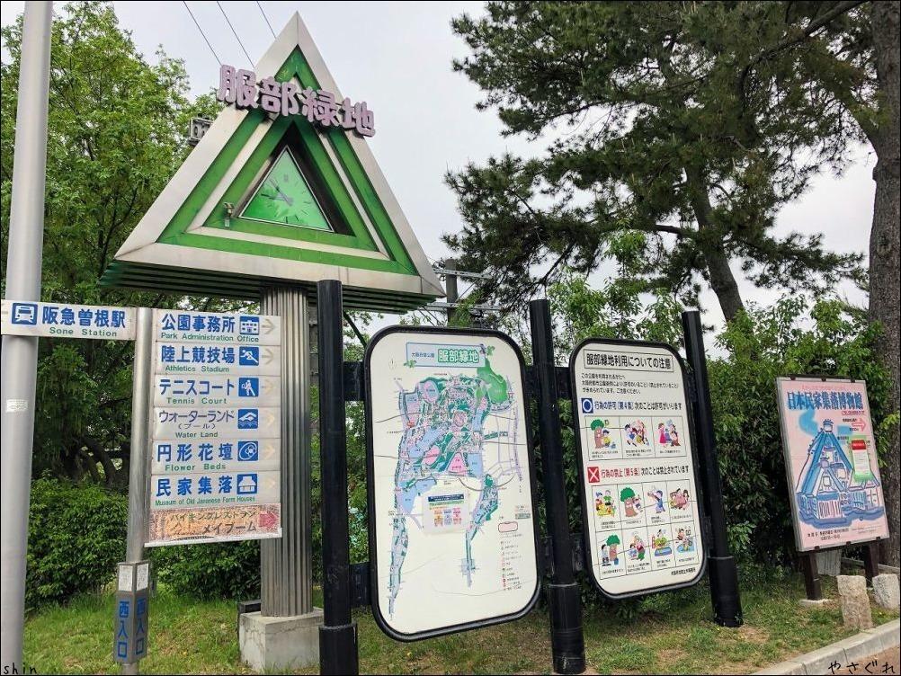 210920緑地公園散策とホッケで晩酌_a0352827_15460296.jpg