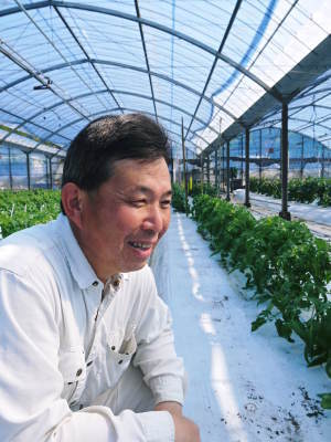 樹上完熟の朝採りトマト 元気に育成長中!そして、新品種のトマトを定植したとのこと!さっそく現地取材! _a0254656_18110648.jpg
