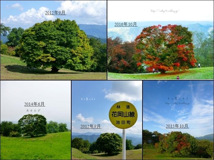 [一昨年]ある春の日_a0160657_00193717.jpg