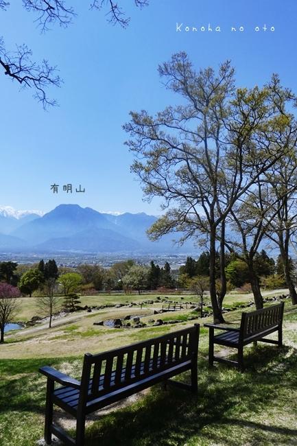 [一昨年]ある春の日_a0160657_01180151.jpg