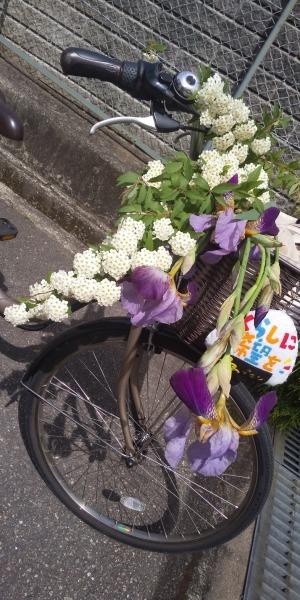 🎏 こどもの日 🎏 憲法通りの政治を実現させましょう 😊 自転車にのって 🌞_f0061067_21570296.jpg