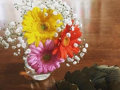 結婚記念日とこどもの日の柏餅_f0231189_14345434.jpg