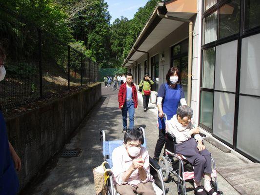 5/5 散歩_a0154110_11272929.jpg