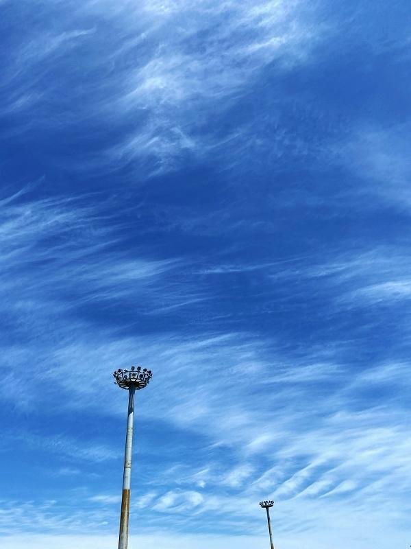目に青葉山ほととぎす初鰹_b0314043_08260724.jpg