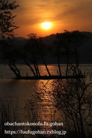 最近の手抜き御飯&琵琶湖の夕暮れ散歩_c0326245_11103549.jpg