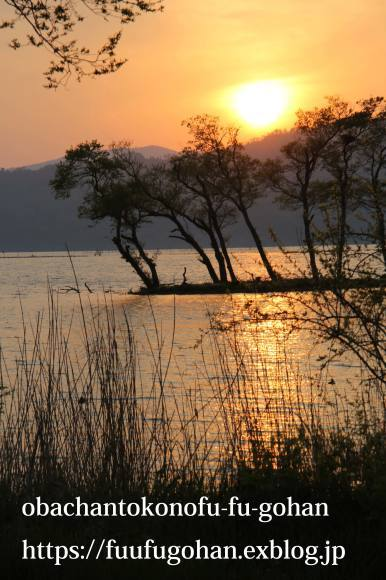 最近の手抜き御飯&琵琶湖の夕暮れ散歩_c0326245_11105638.jpg