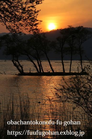 最近の手抜き御飯&琵琶湖の夕暮れ散歩_c0326245_11111034.jpg
