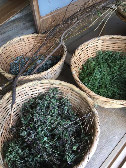 野草を干して焙じてお茶にする_f0182246_21051087.jpg