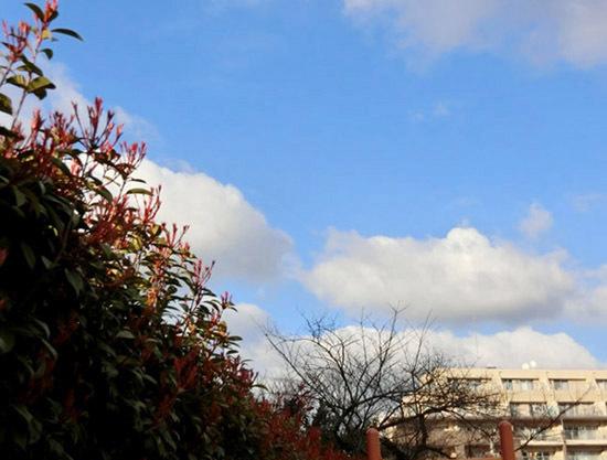 青い空、白い雲_b0255303_16444492.jpg