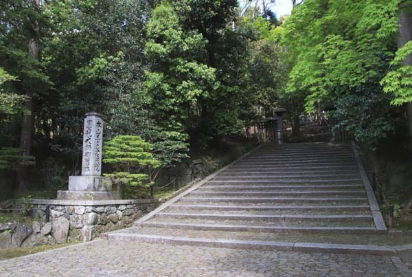 法然院 新緑の盛り_e0048413_21265591.jpg