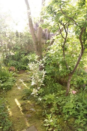 庭で朝ごはん_b0132338_07413471.jpeg