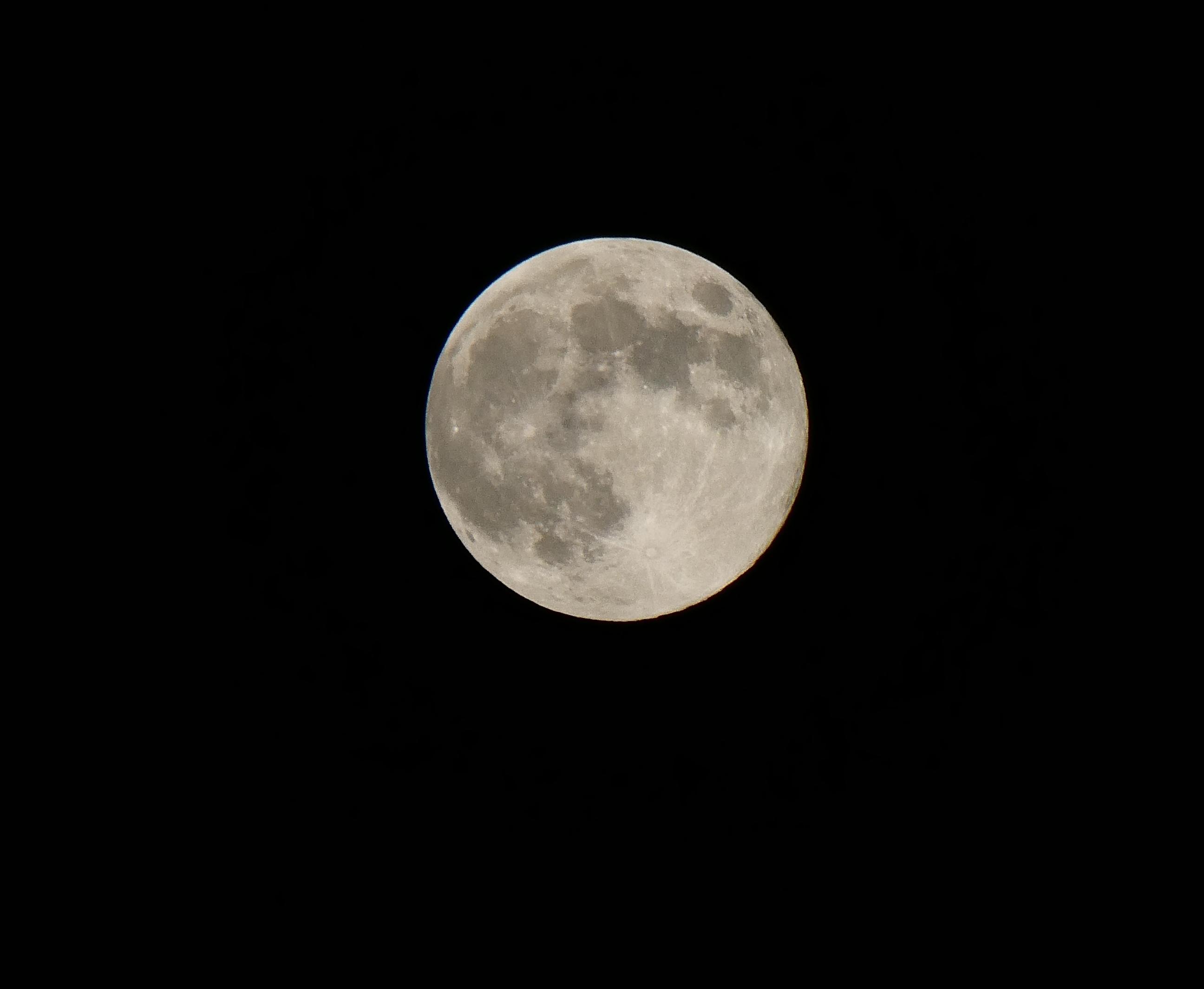 5月の満月(フラワームーン)  2020-05-08 00:00   _b0093754_23054380.jpg