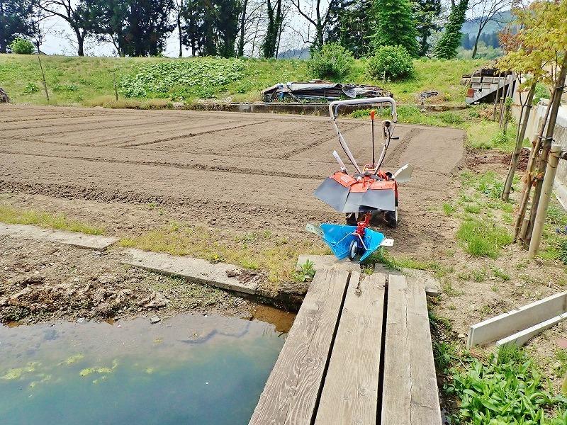 """兼業農家の家庭菜園では\""""畝立て作業\""""でした_c0336902_19060265.jpg"""