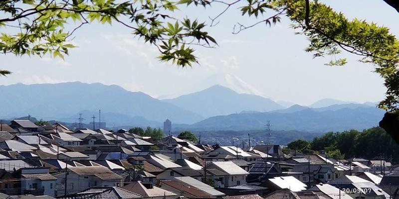 高幡不動散歩_c0051105_22493478.jpg