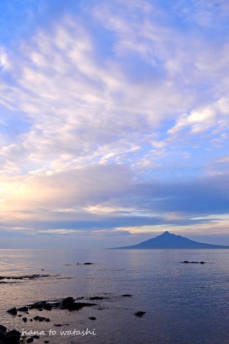 5月31日まで来島自粛のお願い_e0120026_22161311.jpg