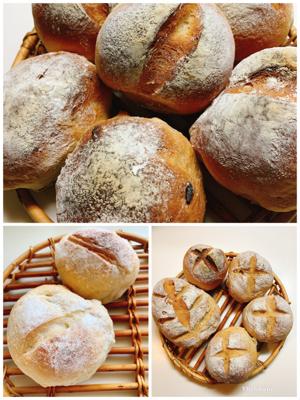 本日のパン仕事復活❗️_a0323249_02561313.jpg