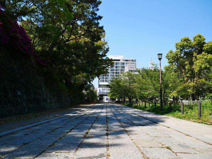 和歌山城公園にて  2020-05-13 00:00   _b0093754_23002373.jpg