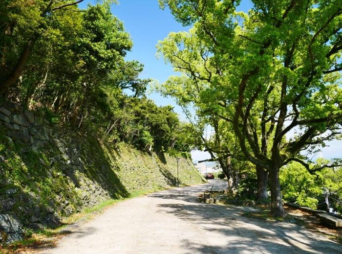 和歌山城公園にて  2020-05-13 00:00   _b0093754_23012093.jpg