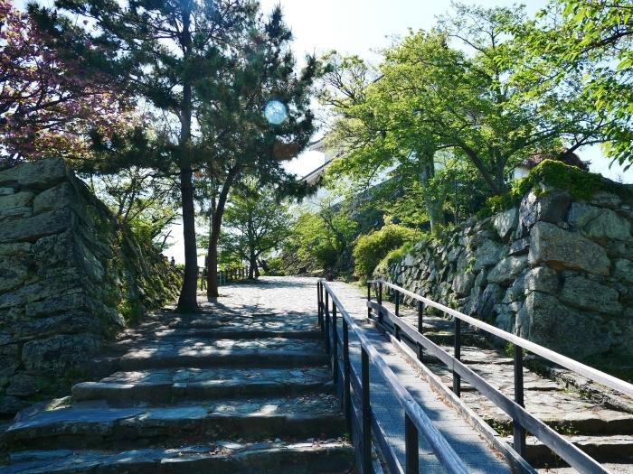 和歌山城公園にて  2020-05-13 00:00   _b0093754_23013250.jpg